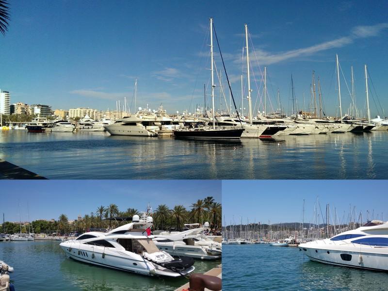 Palma Marina2